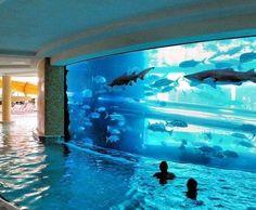 San Alfonso Del Mar Beach Resort. Aquarium: http://beachblissliving.com/san-alfonso-del-mar-artificial-beach-pool/