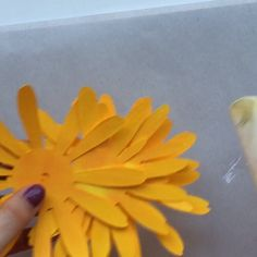 Paper Flower Tutorial: Gerbera Daisy for Cricut and SilhouetteGet crafting and make trendy paper flowers! Use this cutting machine template based on real flowers to craft an easy-to-make Gerbera daisy. Templates are optimized for cutting Paper Sunflowers, Paper Flowers Craft, Giant Paper Flowers, Diy Flowers, Fabric Flowers, Real Flowers, Flower Paper, Flowers Garden, Paper Flower Making