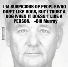 """I'm suspicious of people who don't like dogs, but I trust a dog when it doesn't like a person."" - Bill Murray"