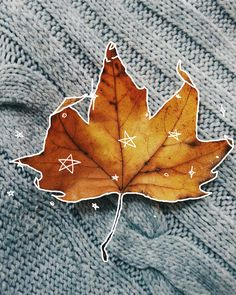 """A Fallen Leaf"" Made with PicsArt by chanomega"