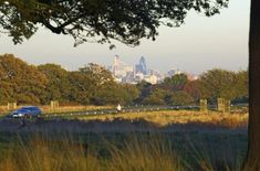Hahnemuhle PHOTO RAG Fine Art Paper (other products available) - London skyline from Richmond Park, London, England, United Kingdom, Europe - Image supplied by WorldInPrint - Fine Art Print on Paper made in the UK Richmond Park, London Skyline, London England, Poster Size Prints, Photo Mugs, United Kingdom, Country Roads, Europe, Fine Art