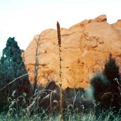 Colorado by Christina Arza for Steadfast Magazine