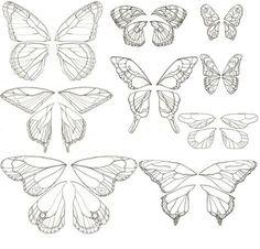 Papillon Ulysses antique 1860 imprimer, insecte vintage