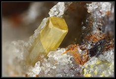 Stolzite,  PbWO4, Les Montmins Mine (Ste Barbe vein), Échassières, Ébreuil, Allier, Auvergne, France.