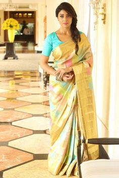 Shriya Saran in multi colour pattu saree photoshoot, Shriya Saran Photoshoot, Hot Shriya Saran in multi colour pattu saree photoshoot