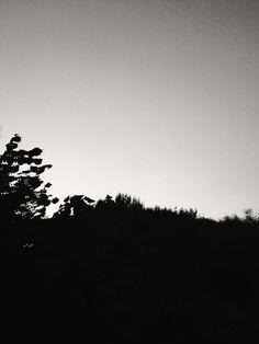 silhouette.