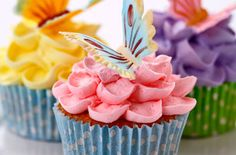 Looking for cupcake recipes, woman's weekly recipes, recipe videos, cupcakes or buttercream recipes? Don't fork out loads for a wedding or birthday cake! Woman's Weekly's Sue McMahon shows us how to ice beautiful cupcakes in a step-by-step recipe video. Basic Cupcake Recipe, Cupcake Recipes, Cupcake Cakes, Dessert Recipes, Desserts, 12 Cupcakes, Cupcake Ideas, Birthday Cupcakes, Cupcake Toppers