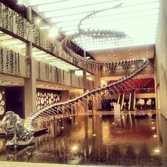 Australian Places and Event's - Queensland Art Gallery, Southbank, Brisbane QLD. An installation for the Asia Pacific exhibition. The skeleton of a snake made from steel. by dgfoley, via Flickr Brisbane, Skeleton, Stuff To Do, Snake, Art Gallery, Asia, Bucket, Events, Steel