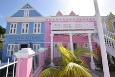 Why Scuba Lodge Curaçao is perfect for a Caribbean vacation