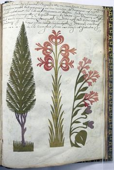 Folio 50r. Album leaf with  paper cut-outs. Cut-outs of green cypress tree, orange lily, pink lilac and violets.