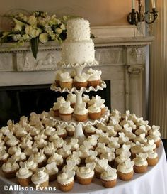 Another type of Wedding Cake and Cupcakes- So Sophisticated!! Like Cupcakes better than Sheetcakes..