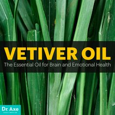 Vetiver oil - Dr. Axe  http://www.draxe.com #health #holistic #natural