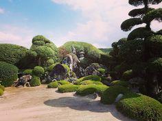 #travel #japan #kagoshima #chiran #japanesegarden