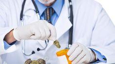 #Medical marijuana legal in Australia: What it means for you - NEWS.com.au: NEWS.com.au Medical marijuana legal in Australia: What it means…