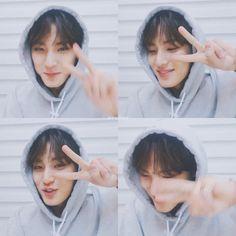 Woozi, Wonwoo, Jeonghan, Dino Seventeen, Mingyu Seventeen, Kim Min Gyu, Seventeen Wallpapers, Meanie, Fantasy Photography