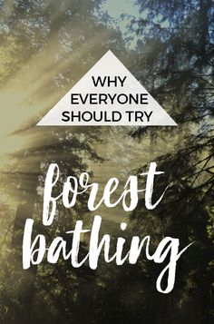 How (and Why) to Try Forest Bathing : The Benefits of Shinrin-yoku : What's the definition of forest bathing? Forest bathing, also called forest therapy, is simply spending time in nature with a quiet mind that allows you to experience your surroundings with all your senses. Take in the sights, smells and sounds. What is a forest bath? Where can I go forest bathing near me? #forestbathing #shinrinyoku #resolutions2018
