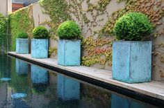 Ben Scott Garden Design Melbourne - Portfolio, Beaconsfield Pde Middle Park, oxidized copper pots reflected in the black tiled lap pool which doubles as a reflecting pool