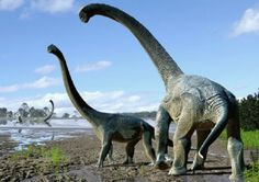 An artist's impression of the Savannasaurus elliottorum | Via the Australian Age of Dinosaurs Museum