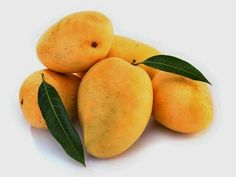Mango is popularly known as one of the most nourishing, delicious and revitalizing tropical fruits.