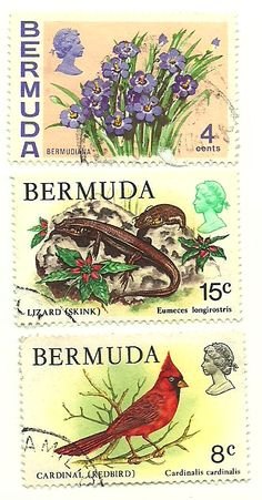 Bermuda stamps - featuring Her Majesty The Queen.Pin provided by Elbow Beach Cycles http://www.elbowbeachcycles.com