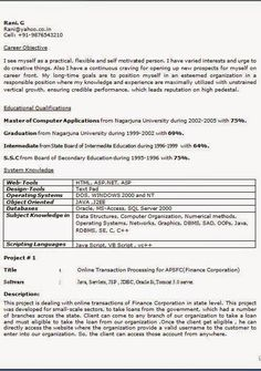 Example Of Excellent Resume Pleasing Best Curriculum Vitae Free Download Sample Template Excellent Resume .