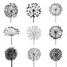Floral Elements for design dandelions. Vector illustration Floral Elements for design dandelions. Vector illustration The post Floral Elements for design dandelions. Vector illustration appeared first on Diy Flowers. Wood Burning Crafts, Wood Burning Patterns, Wood Burning Art, Wood Burning Stencils, Stencil Wood, Stencil Art, Stenciling, Illustration Vector, Vector Art