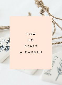 How to Start a Garden - Clementine Daily