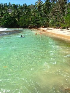 Mirissa Beach, Sri Lanka. For the best of art, food, culture, travel, head to theculturetrip.com. Click http://bit.ly/CultureTripSLanka for everything a traveler needs to know about a trip to Sri Lanka.