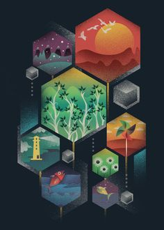 visualgraphic:    Geometrical Wonders