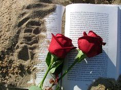 , diada del llibre i la rosa- Happy Saint George! (day in which in Catalonia we give to the ones we love a book and a rose)- ¡Feliz dia de San Jorge, día del libro y la rosa. Aesthetic Roses, Red Aesthetic, Aesthetic Pictures, Rose Tumblr, Book Flowers, Rose Images, Rose Wallpaper, Love Rose, Book Photography
