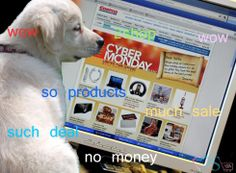 Been pretty obsessed with doge memes lately..my first ever try at this about cyber monday sale shopping
