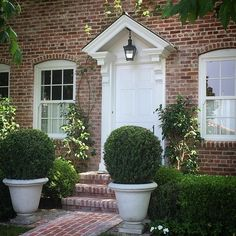 Potted boxwood of nice scale at house entrance - via Kathleen DiPaolo