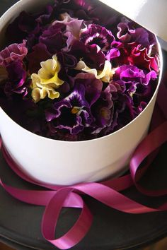 Pansy box flower