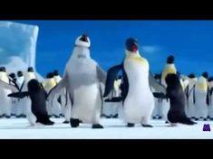 happy birthday mom The Penguin Song Happy Birthday - mom Happy Birthday Song Youtube, Birthday Wishes Songs, Funny Happy Birthday Song, Happy Birthday Wishes Cake, Happy Birthday Typography, Happy Birthday Best Friend, Happy Birthday Video, Happy Birthday Celebration, Happy Birthday Greetings