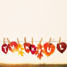 Thanksgiving blessings: prayers from around the world