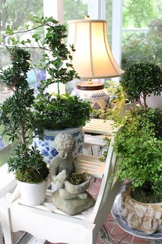 blue and white with topiaries... charming vignette