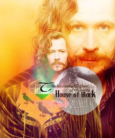 Sirius Black, the last heir of Blacks