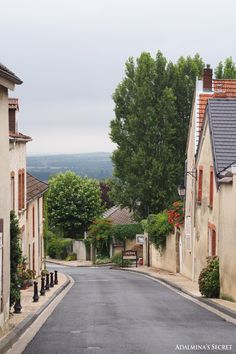 Champagne, French countryside - Adalmina's Secret