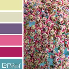 Color Palette: Pink, Teal, Purple, Yellow.  If you like our color inspiration sign up for our monthly trend letter - click the image for the link.