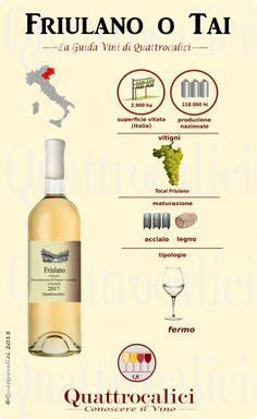 All about Friulano and Tai wines on Quattrocalici Wine Guide Wine Cellar Racks, Wine Folly, Wine Vineyards, Wine Guide, Wine Deals, Wine Refrigerator, In Vino Veritas, Italian Wine, Wine List
