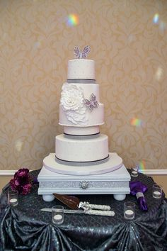 """A """"Butterfly Themed"""" Purple And Silver Wedding In Delaware - Munaluchi Bridal Magazine"""
