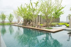 Swimming pool on rooftop @ Sari by Sansiri