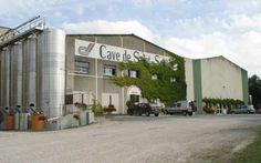 Ville de Montbron - Le vignoble de SAINT-SORNIN