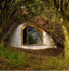 """In a hole in the ground there lived a Hobbit - not a dry, sandy hole, nor a damp, wet hole; this was a Hobbit hole, and that means comfort."" J.R.R. Tolkien"
