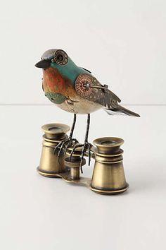 Gladiator Bird, Binoculars: anthropologie
