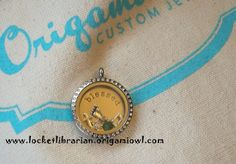 $62 + tax and shipping   Large silver locket with crystals,  $28 BLESSED plate, large $9 5  charms, $5 each $25 (you can pick the charms)   www.locketlibrarian.origamiowl.com