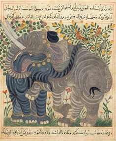 Ibn Bakhtīshū (d. 1058) | Two Elephants | Manāfi˓-i ḥayavān (The Benefits of Animals), in Persian | for Shams al-Dīn Ibn Ẓiyā˒ al-Dīn al-Zūshkī | Persia, Maragha | Between 1297 and 1300 | The Morgan Library & Museum