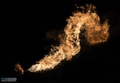 Foxhound Photography - Fire Painting