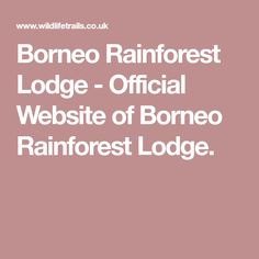 Borneo Rainforest Lodge - Official Website of Borneo Rainforest Lodge.