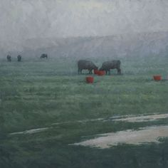 Terry Gardner - Red Buckets and Wet Fields